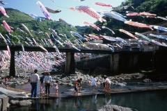 小国町/杖立温泉の鯉のぼり祭り